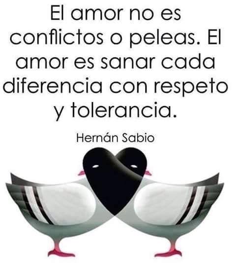 〽️ El amor no es conflictos o peleas. El amor es sanar cada diferencia con respeto y tolerancia. Hernán Sabio