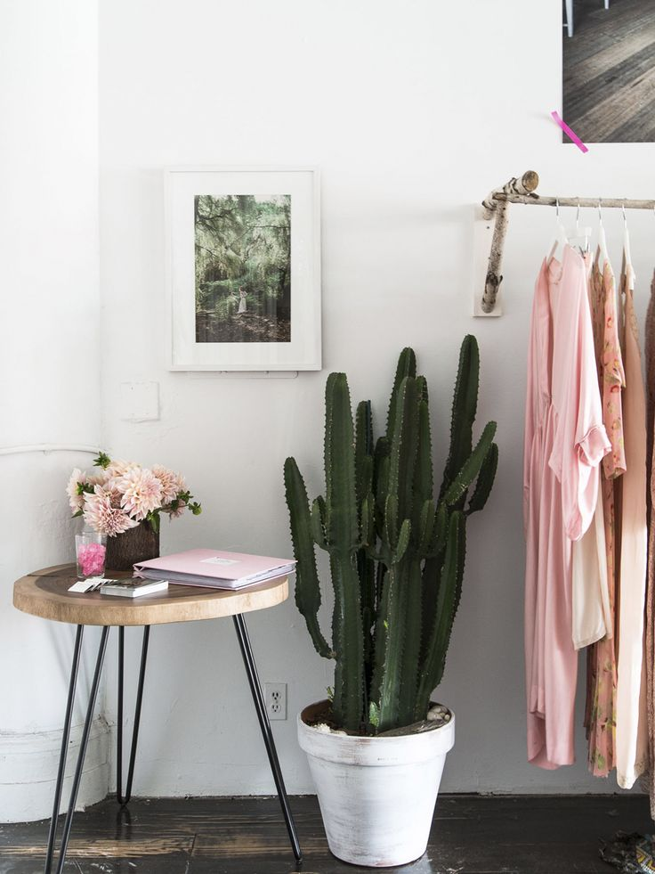 Love the combination of the tough cactus and the soft blush tones