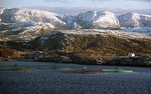 Aquaculture-related employment is on the increase in Troms, Norway, according to a new study by Nofima. Food production jobs in aquaculture make up just a small amount of the roles generated by aquaculture in the region. Jobs in supply and service industries such as maintaining net cages, mooring and installing fish farms provide work for a larger amount of people.