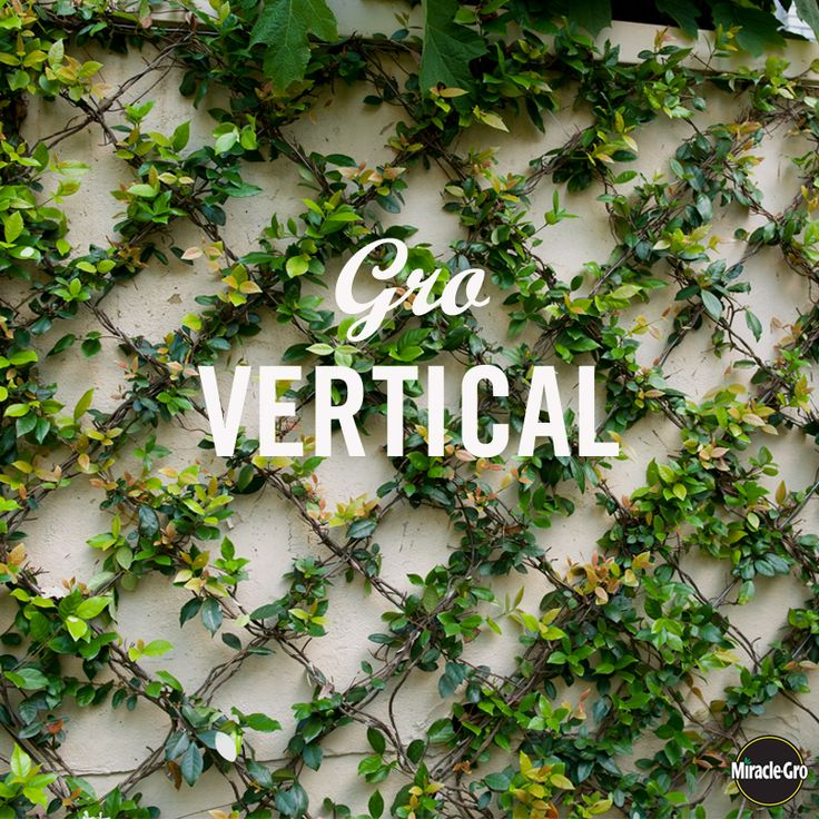 A how-to on Gro-ing a vertical garden. #DIY