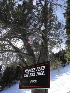 Axe sponsored a bra tree and placed ads at 10 ski areas to target young males.