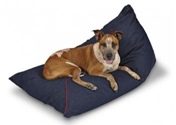THE LOUNGER - Every which way is up!