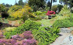 Mendocino Coast Botanical Gardens, Fort Bragg, CA - The Most Beautiful Public Gardens on the West Coast | Travel + Leisure