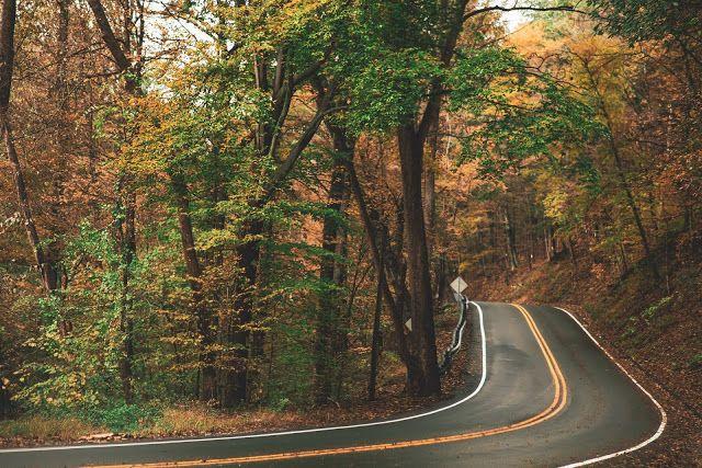 خلفيات وصور لسطح المكتب افضل صور الكمبيوتر وسطح المكتب بجودة عالية الدقة Nature Pictures Scenic Road Trip Landscape Scenery
