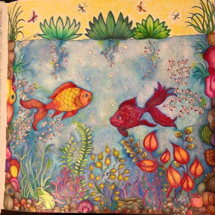 26 Best Images About Fish Secret Garden Peixe Jardim Secreto On Pinterest