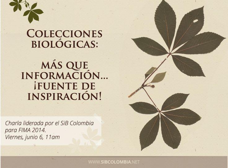 Feria Internacional del Medio Ambiente 2014