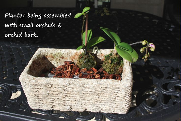 Hypertufa with orchid bark and orchids. Lightweight and no soil.