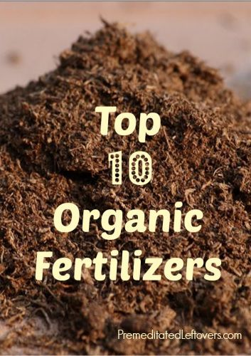 Top 10 Organic Fertilizers - These are the top 10 organic fertilizers that every gardener should use to create a healthy organic garden.