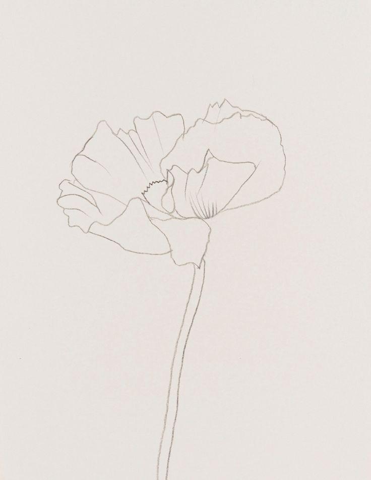 poppy (2010), ellsworth kelly.