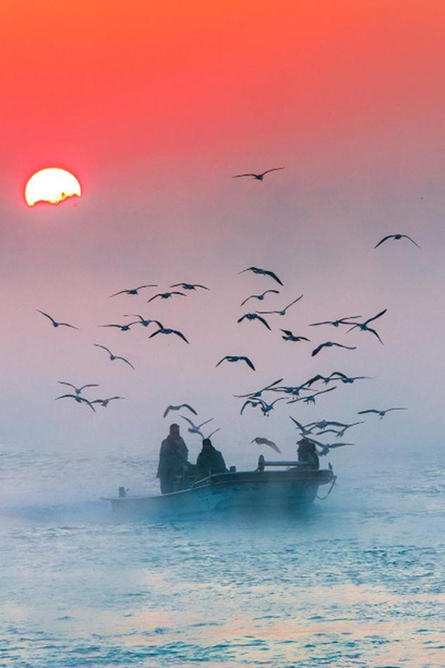 - Magic Sunset (by RYU Jung Cheol) Via Tumblr LiberatingDivineConsciousness.com