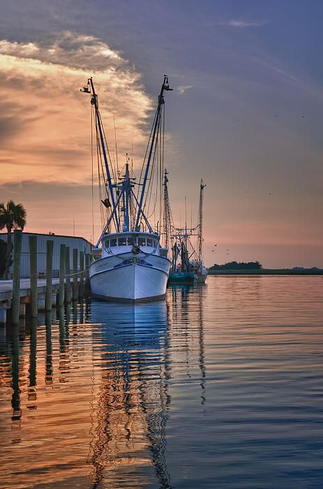 """Shrimp boats are a comin their sails are in sight!"" ... song recorded by Jo Stafford in 1951 called, ""Shrimp Boats"""