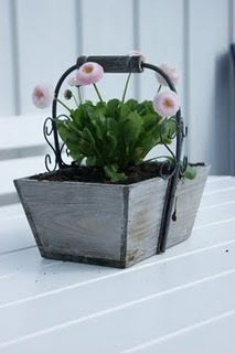 cute: Garden Ideas, Bucket Handle, Pot Container Gardening, Flowers Greens, Spring Decor, Container Design, Craft Ideas, Edible Flowers