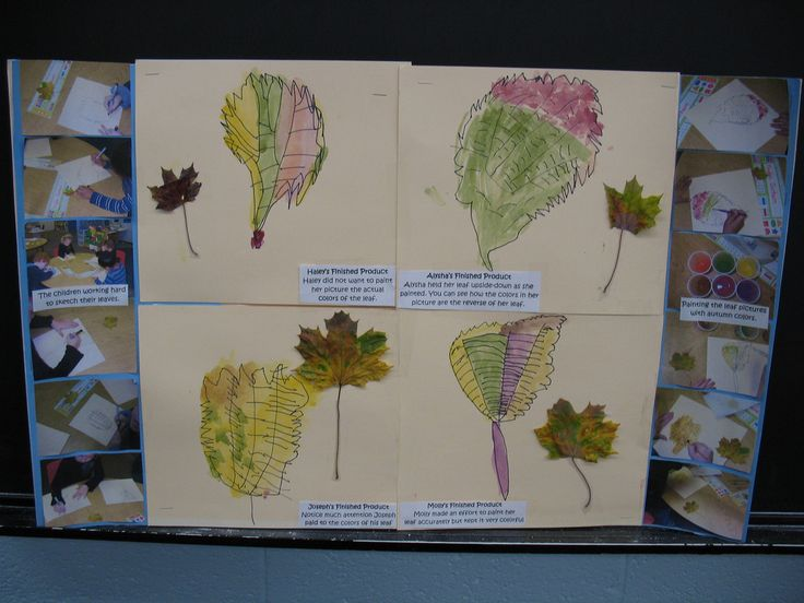 Documentation: Fall Leaves