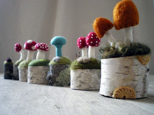 the lineup | Tiny toadstools all in a row. These little scen… | Flickr