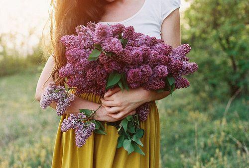 prettylittleflower:  lilac dream by .nevara on Flickr.