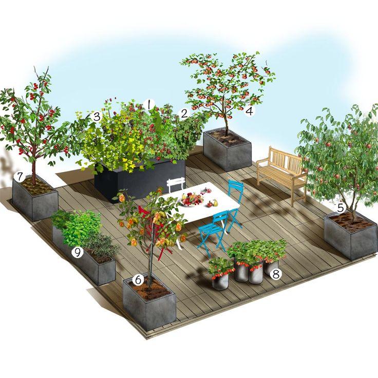 Projet aménagement jardin : Terrasse gourmande   jardin ...
