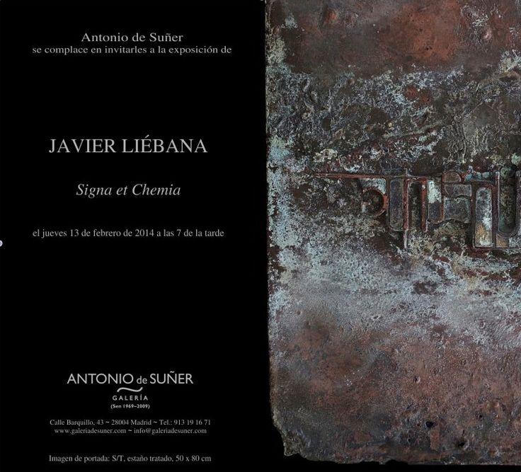 www.javierliebana.es