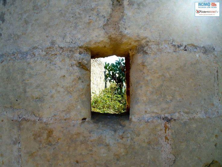 http://www.salentoweb.tv/video/8170/salento-scoprire-museo-diffuso-cavallin