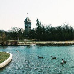 Winnipeg (at Assiniboine Park)
