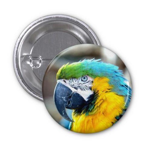 Colorful Parrot - Button