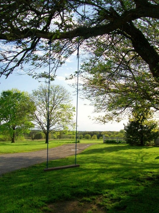 .Tree Swings, Growing Up, Kids M, Summer, Lap, Trees Swings, Zoe Swings, Country Livin, Swings Time