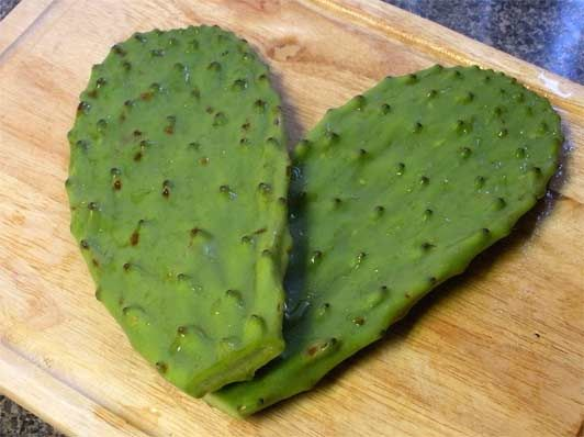 authentic mexican recipes cacti nopales Unusual Authentic Mexican Recipes: Cactus and Cambray Onion Side Dish