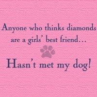 This is SO true. :o): Girls, Best Friends, Dogs, Quotes, So True, Fur Babies, Puppy, Love My Dog, Animal
