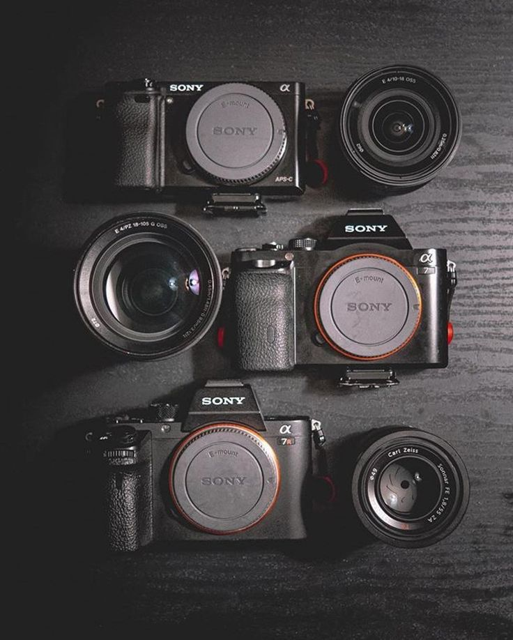 What would you add to this collection?The progression of a gearaholic Sony A6000  A7  A7RII  Photo by @professorhines Tag a camera fanatic! #camera #gear #sony #carlzeiss #lens #sonya6000 #sonya7 #sonya7rii #sonyalpha #cameras #photoshooting #photographyislife