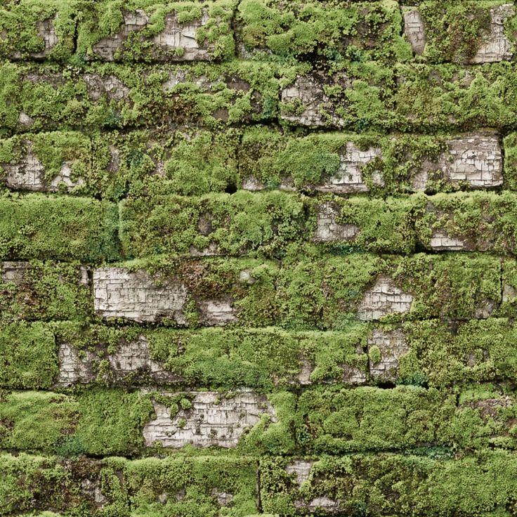 KOZIEL | Briques anciennes blanches végétalisées
