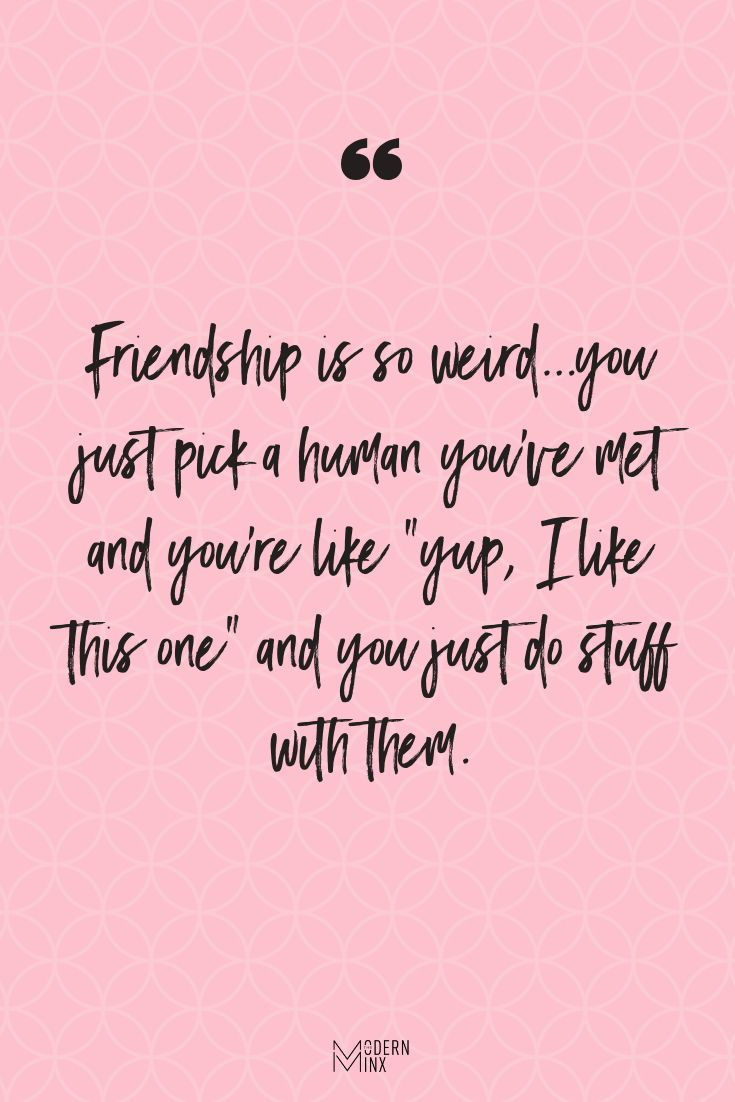 Funny Friendship Quote The Modern Minx Short Funny Friendship Quotes Friendship Quotes Funny Friends Quotes