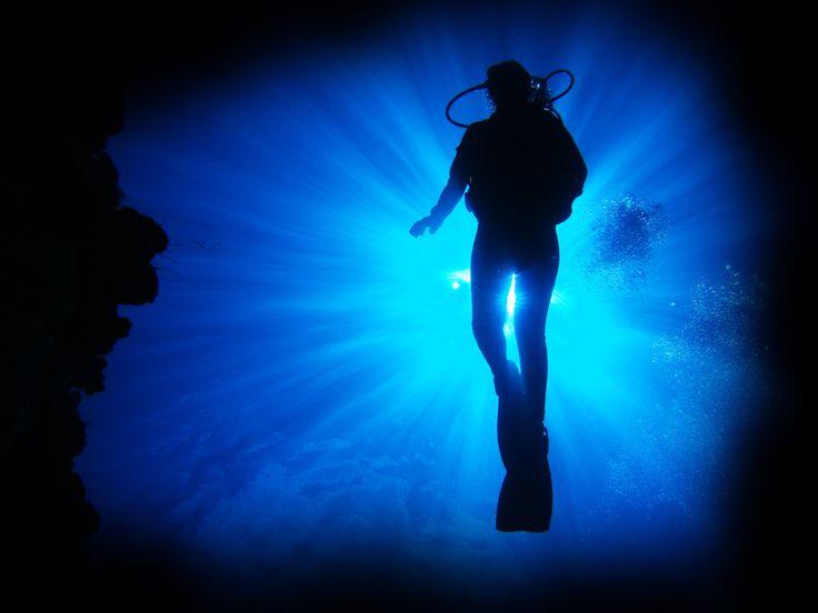IDC Scuba    PADI Open Water Diver Course