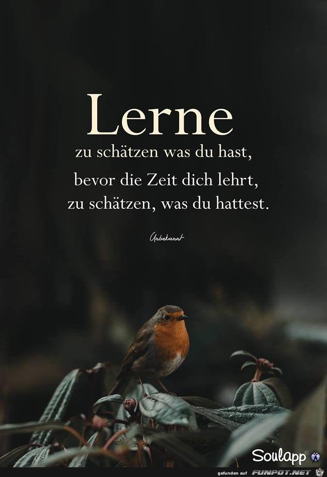 lerne das leben zu schätzen sprüche Pin von Camelia camis941 auf Words | Pinterest | Quotes, Words und  lerne das leben zu schätzen sprüche