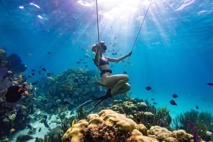 Ali Kinsella On Instagram Underwater Playground Jeanlouis Lebreux Underwaterphotography Fre Underwater Underwater Photos Underwater Life