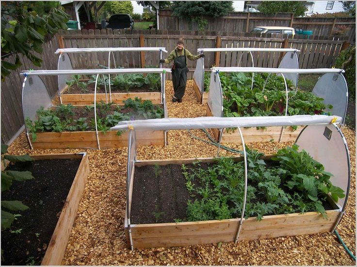 Raised Vegetable Garden Design Markcastroco