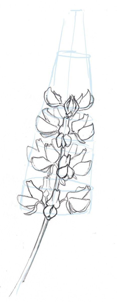 260 best teach me to draw images on pinterest drawing Teach me how to draw a flower
