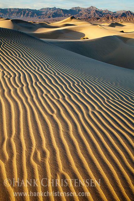 Mesquite Dunes, Death Valley National Park - California, USA