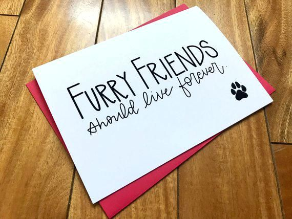 photo about Free Printable Pet Sympathy Cards named Free of charge Puppy Sympathy Playing cards Picture 0 Free of charge Printable Pet dog Sympathy