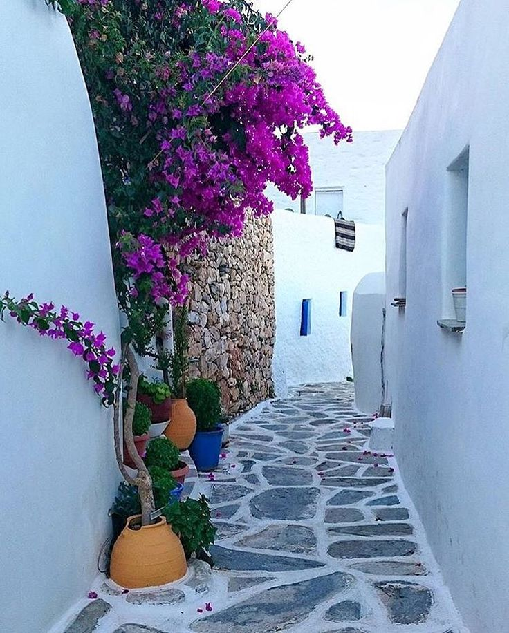 Colorful and so calmness alley in Sikinos island (Σίκινος) ❤️.