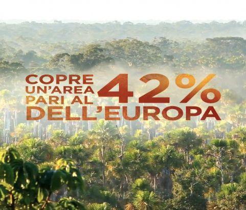 UNA NOCE PER L'AMAZZONIA / CESVI