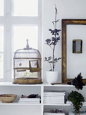 love birdcages ... want to put a spider plant in one and let it overflow. would look so cool.