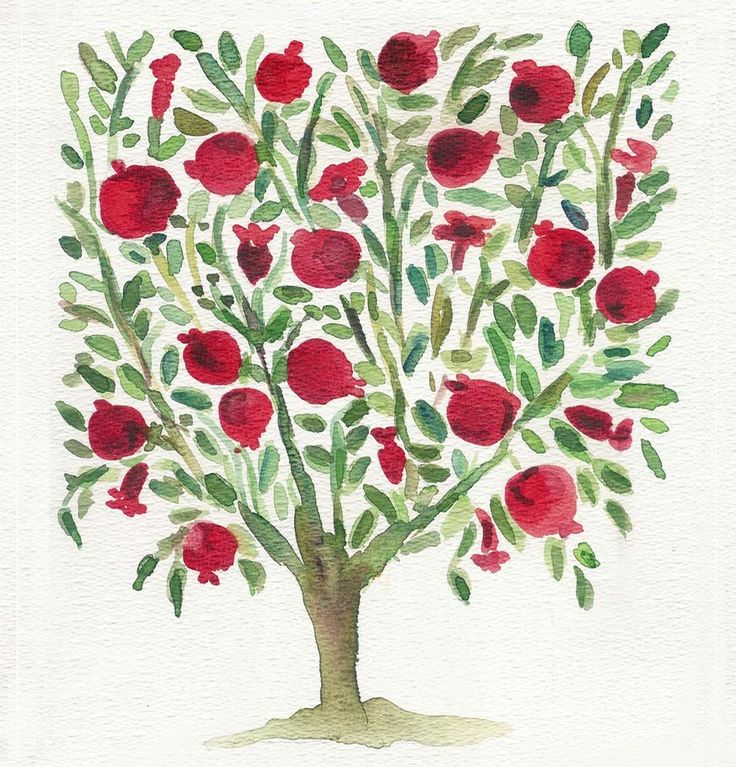 The Pomegranate Tree original watercolor painting by TheJoyofColor