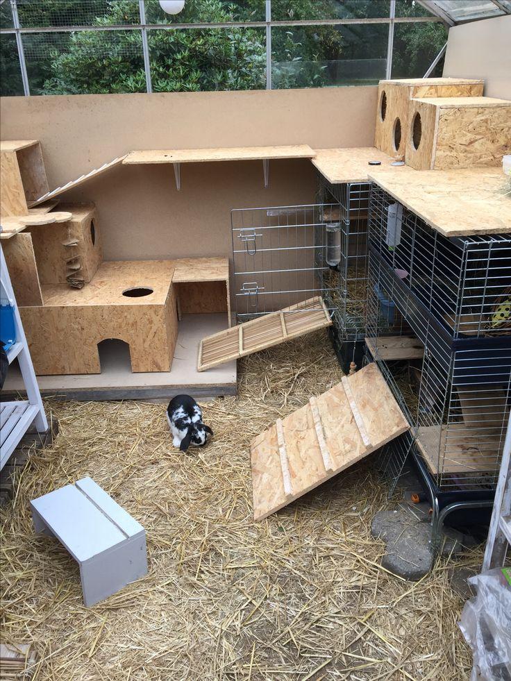 die besten 25 indoor kaninchenstall ideen auf pinterest. Black Bedroom Furniture Sets. Home Design Ideas