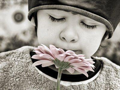 Es muy frecuente, al tratar niños con problemas de aprendizaje, encontrar algunos patrones emocionales en desequilibrio dentro del ambiente donde el niño se desenvuelve. El niño es el reflejo de lo que nosotros los adultos proyectamos en él.