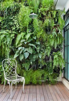 Jardim vertical com chuveirão para dias quentes                              …