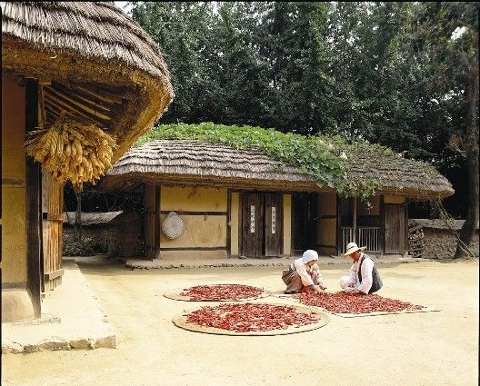 Cho-ga-jib (timber framed, cob, thatch roofed home).  Drying peppers on straw mats.  Love how they train squash to grow on their roof.