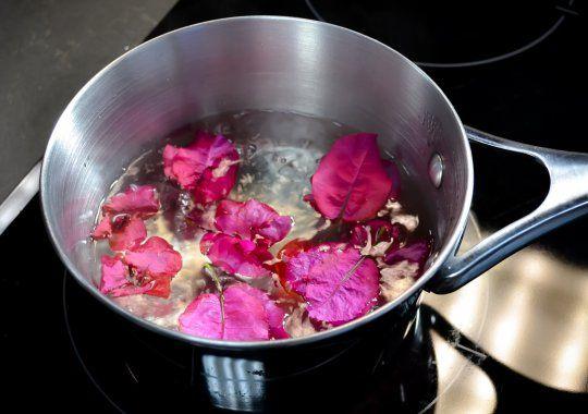Té de Bugambilias, remedio natural para la tos.
