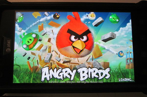 """June Stoyer, host of The Organic Show  """"Angry Birds, Meet Hamstrong: A Superhero Fighting FOR Animals"""""""