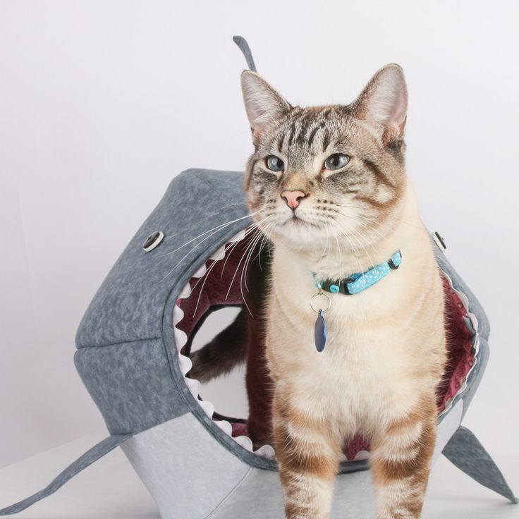 Great White Shark Cat Ball Kitty Bed