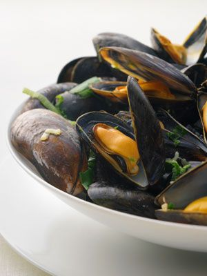 Witbier Mussels (and other beer cooking)