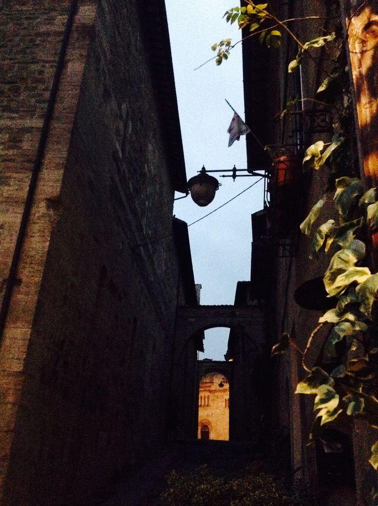 Il bello del borgo medievale sono i vicoli. Non ti puoi sbagliare, guarda fino in fondo e scoprirai uno scorcio che non ti aspetti! Questa è Piazza Filippo Silvestri vista da una prospettiva insolita... Quella di un piccolo gatto randagio che si aggira nei dintorni
